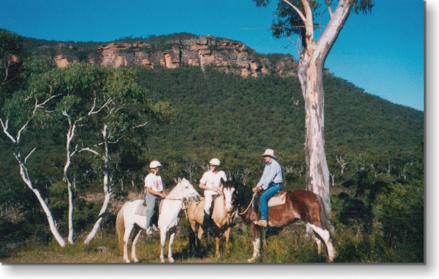 Megalong Heritage Centre Horse Riding